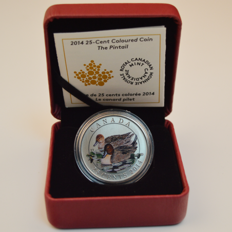 2014 25 Cents - The Pintail